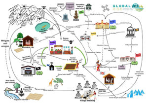 community to country food diagram small