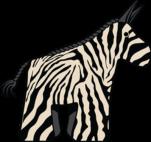 punda-the-zebra-400-px